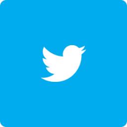 Twitter(Onaysız) Kategorisi